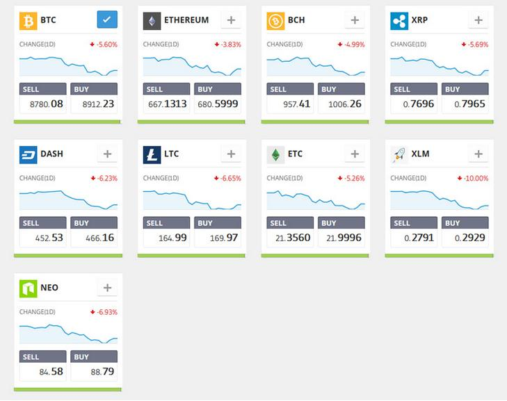 The Etoro crypto-supported portfolio