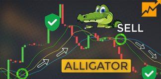 Chỉ Báo Alligator Là Gì? Trade Forex An Toàn Với Chỉ Báo Hàm Cá Sấu