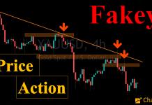 Price Action: mẫu hình nến xác nhận Fakey